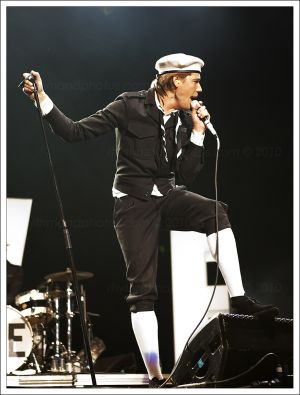 The_Hives_002.jpg